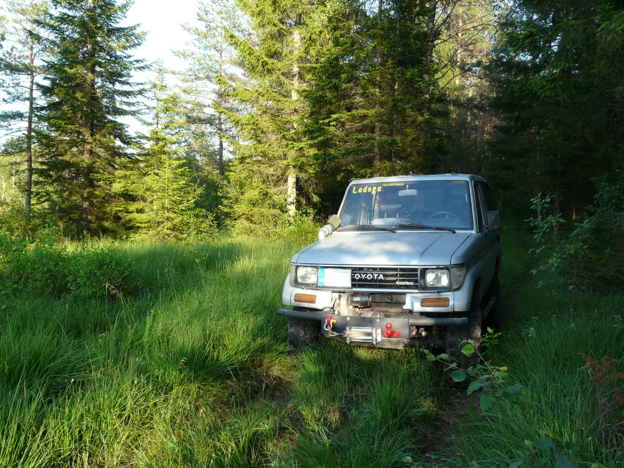 Discover the Wild South by 4X4